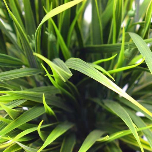 Artificial Ornamental Potted Dense Green Grass 38cm - Home &