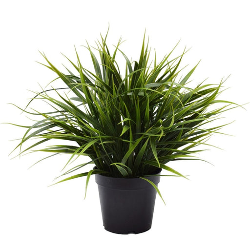Artificial Ornamental Potted Dense Green Grass 38cm