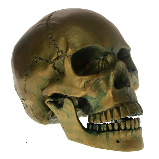 1:1 Life Size Bronze Skull Head With Movable Jaw Antique Skeleton Head Sculpture Halloween Horror Decoraiton Scare Figures Gift
