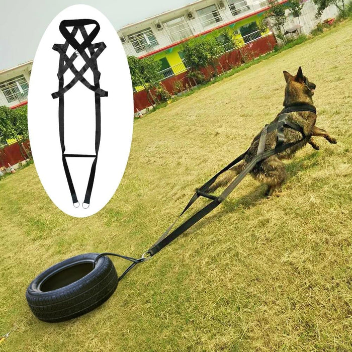 Dog Training Product Supplier Toys K9 Dog Adjustable Treats Trainer Pet Accessories for Medium Large Dogs German Shepherd