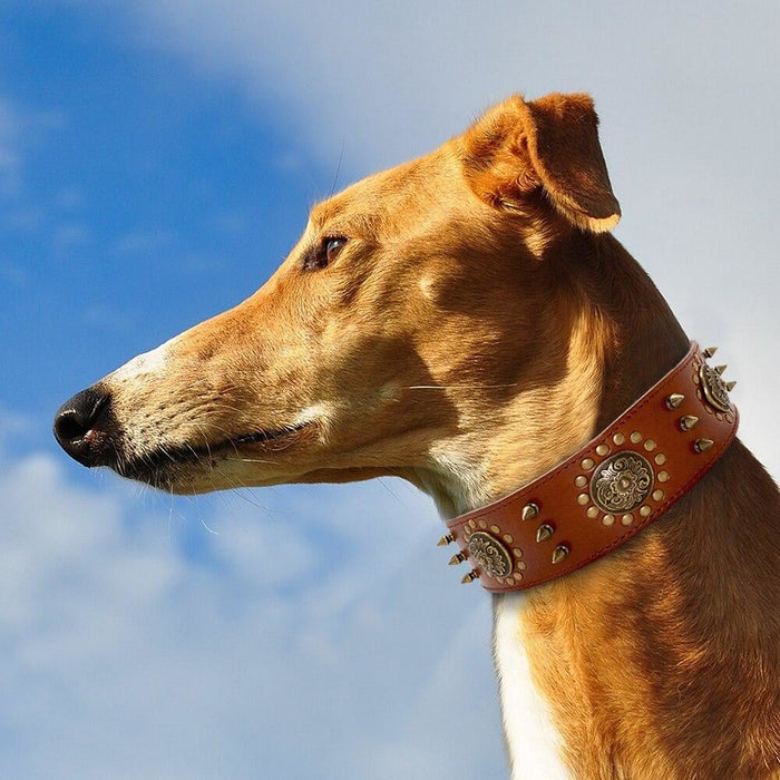 Leather Large Dog Collar Pitbull Spiked Studded Collars for Medium Large Big Dogs Genuine Leather Durable Pet Collar