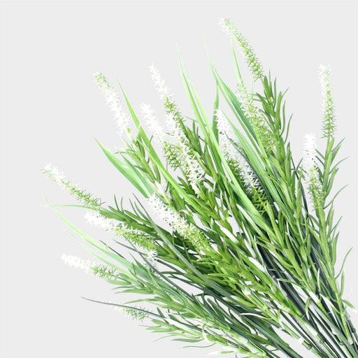 Long Stem White Lavender 50cm Uv Resistant - Home & Garden >