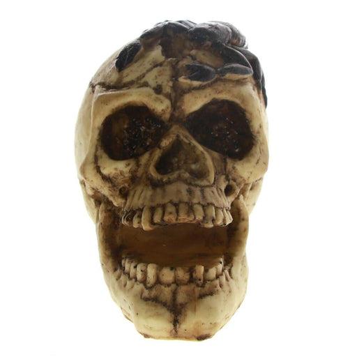 Gothic Punk Dark Side Home Decor Vampire Skull With Scorpion Poison Skeleton Head Statue Halloween Decor Spooky Resin Figurine
