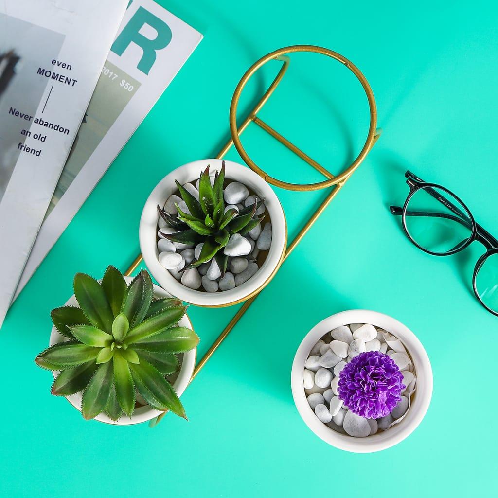 Ceramic Succulent Plant Flower Pot Bonsai Holder Home