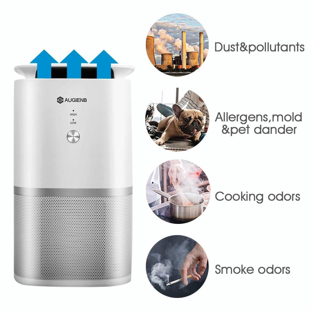 Hepa Active Carbon Filter Sterilizer Odor Allergies Remover