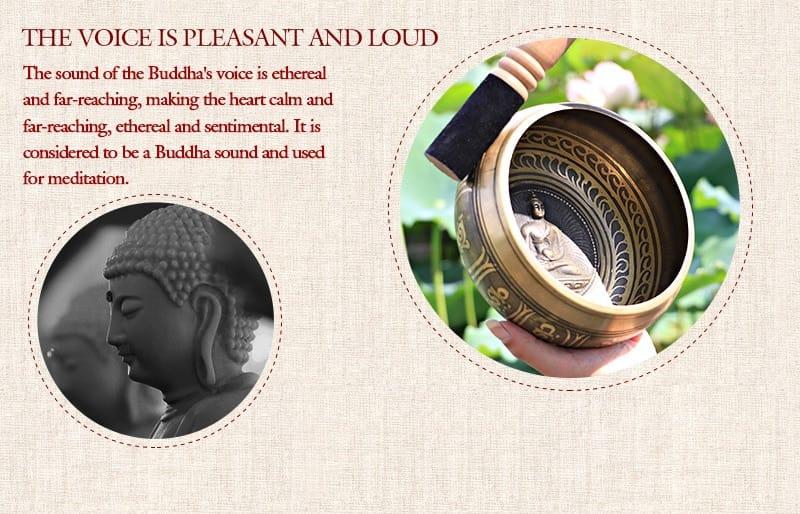 Silent Mind Tibetan Singing Bowl Set Antique Design with